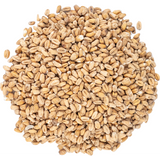 White Wheat Malt, European