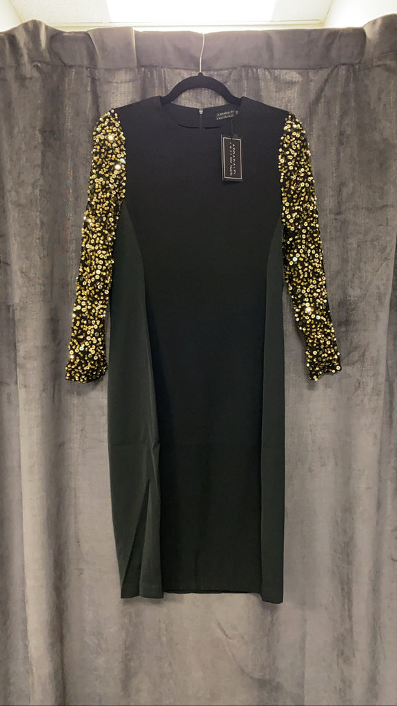 Sequin Sleeve Dress FINAL SALE