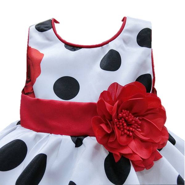 Baby Girl Rose Party Dress-www.my-baby-world.com