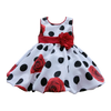 Baby Girl Rose Party Dress
