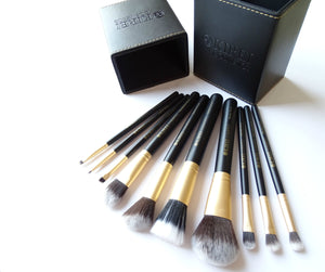 Professional Makeup Brushes - 10 Piece Set ($127 Value)
