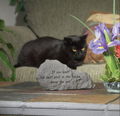 If You Want The Best Seat In The House... Memorial Pet Stone