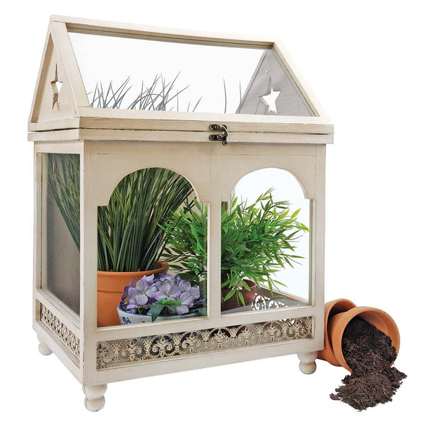 WARDIAN WOODEN TERRARIUM CASE