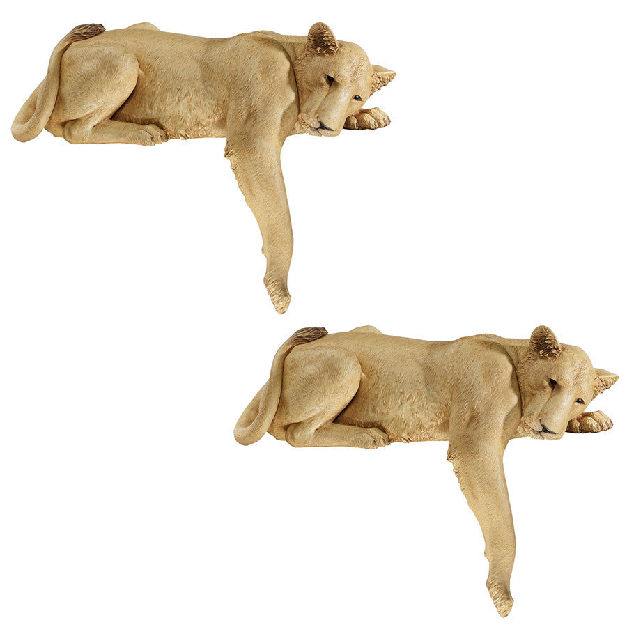 S/2 Lioness Of Namibia Statues