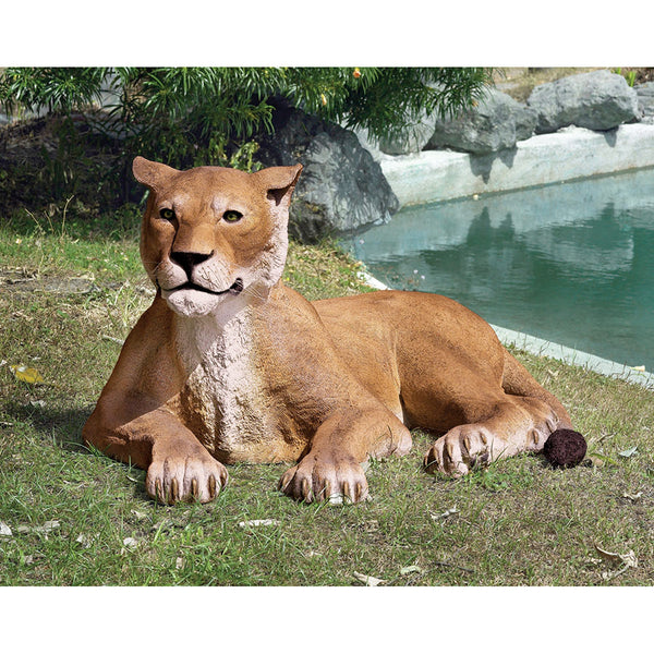 GRAND SCALE LIONESS LYING DOWN