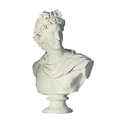Apollo Belvedere 31 -  Greek & Roman Busts