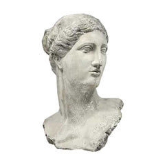 Alexis Head Lg. 49 -  Other Busts Busts