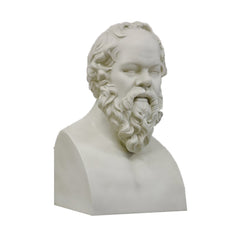 XoticBrands Socrates 21 (Chest Up) - Busts   Greek & Roman