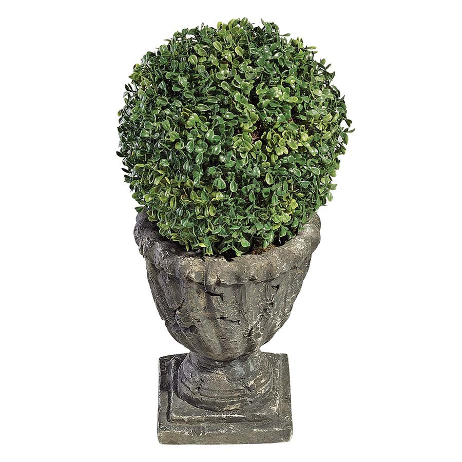10IN BOXWOOD BALL TOPIARY – XoticBrands