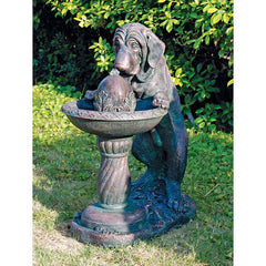 BLOODHOUND DOG DRINKING AT FOUNTAIN