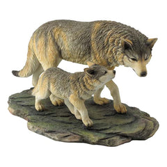 wolf-and-cub-animal