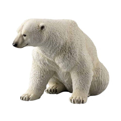 sitting-polar-bear-animal