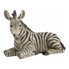 baby-zebra-kneeling-animal
