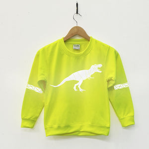 Kids Hi Viz Reflective Dinosaur Sweater - Stencilize