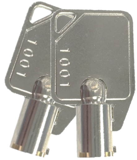 09-0026 Pair of Twinflex enable keys