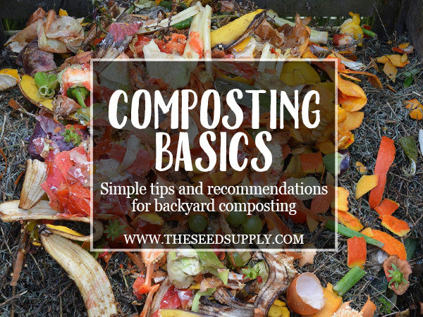 Composting Basics: Simple tips and recommendations for backyard composting