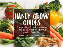 how to grow your favorite foods - the seed supply