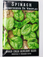 Monstreaux De Viroflay Spinach Seed, 250ct