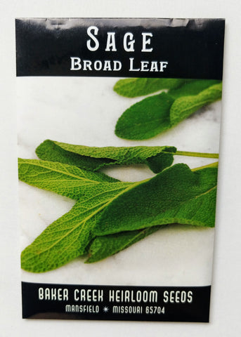 Broad Leaf Sage Seed, 75ct