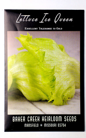 Ice Queen Lettuce Seed, 250ct