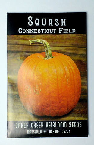 Connecticut Field Pumpkin Seed, 20ct