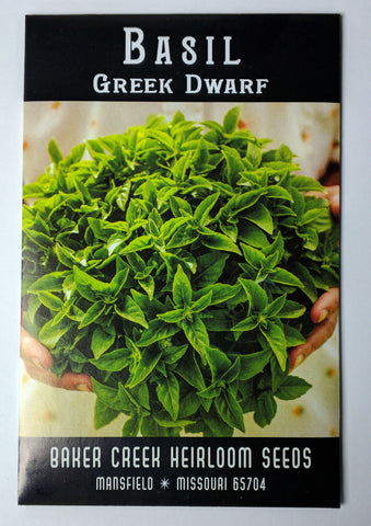 Greek Dwarf Basil Seed, 100ct