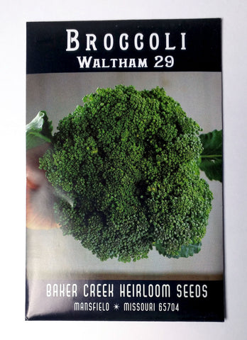 Waltham Broccoli Seed, 300ct