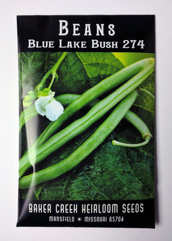 Blue Lake Bush Bean Seed, 40ct