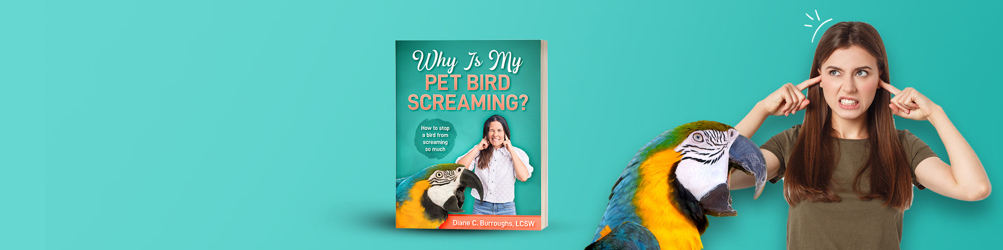 why does my bird scream?