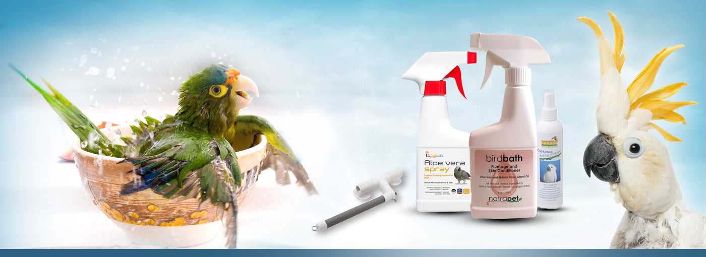 Parrot Shampoo and Feather Care