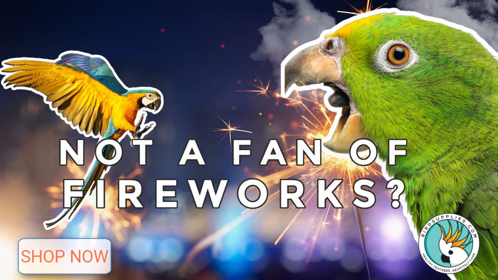 HELP your bird cope with fireworks