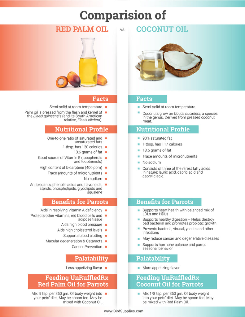 Comparing Red Palm Oil and Coconut Oil for Parrots