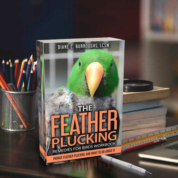get the feather plucking remedies workbook today
