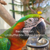 bird supplies in bulk | wholesale bird supplies