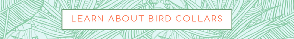 Learn About Bird Collars