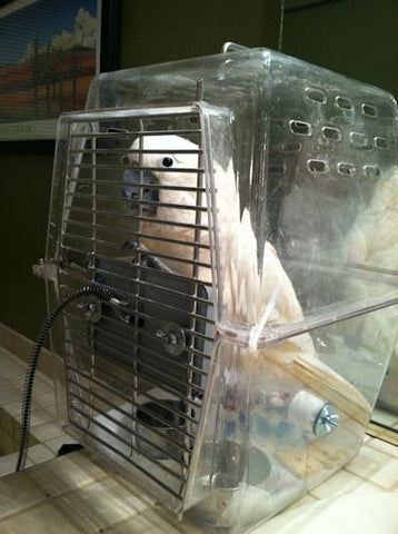 Bird Hospital Cage with Snuggle Up Warmer attached