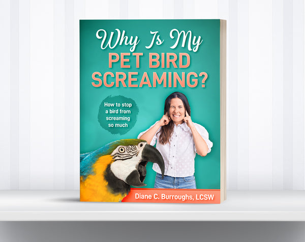 Why Is My Pet Bird Screaming?