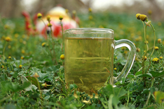 Make Chamomile Calming Tea from loose Chamomile Flowers