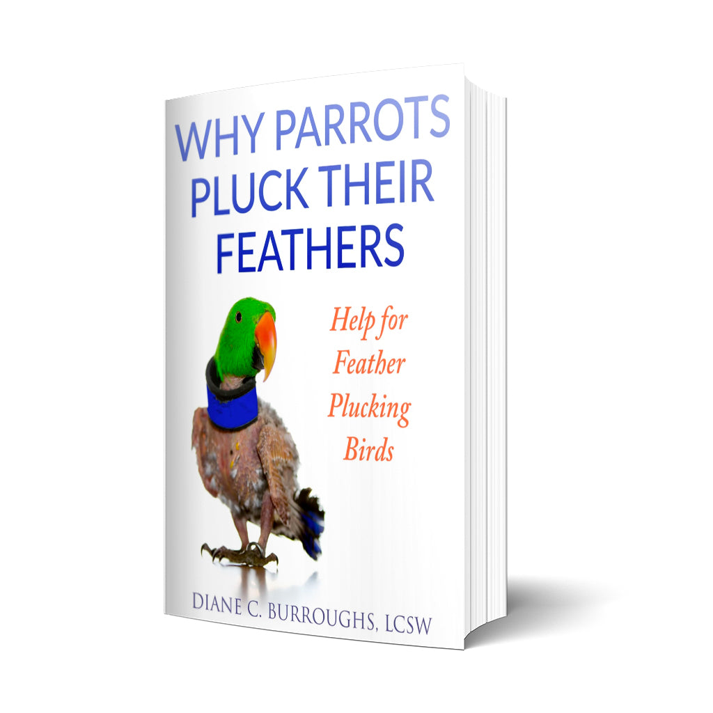 Help for feather plucking birds