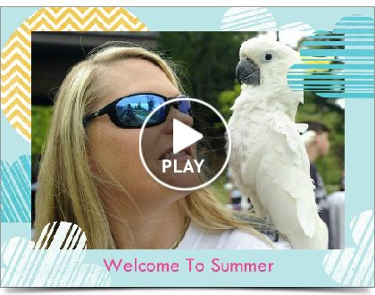 Summer of Parrots Slideshow
