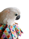 UnRuffledRx Fleece Parrot Collar, Velcro Closure