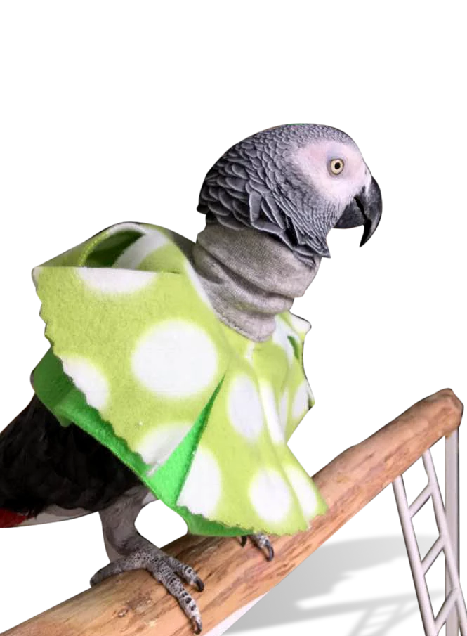 Image of Poncho for Plucking Parrots, Knit Cuff Neck