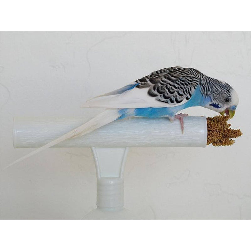 The Percher Universal Training Perch for Better Bonding with Your Parrot