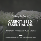 Getting to Know Carrot Seed Essential Oil