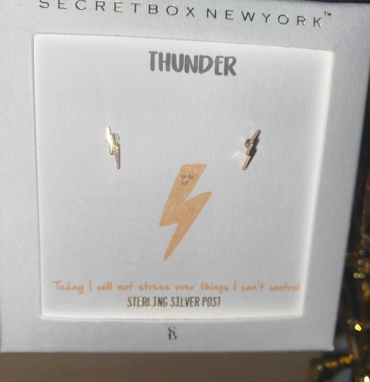 Thunder Silver Earrings