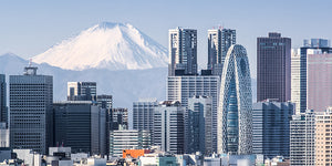 Another Pin in Your World Travel Map: Tokyo, Japan