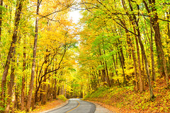 Driving through the Great Smoky Mountains in Autumn