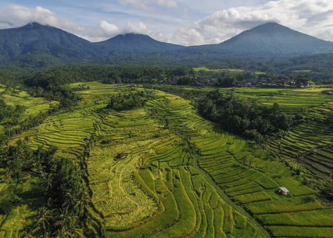 Jatiluwih and the landscape of Mount Batukaru Bali