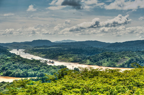 The Panama Canal Near Gamboa