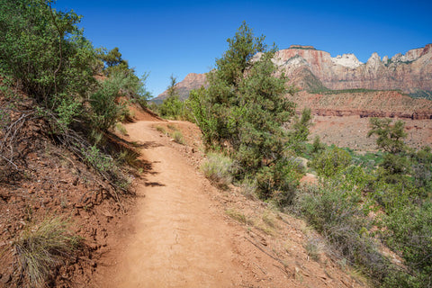 Hiking The Watchman Trail in Zion National Park